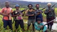 Anggota Komisi I DPR RI Sebut Banyak Pejabat Tinggi Membiayai Gerakan KKB di Papua