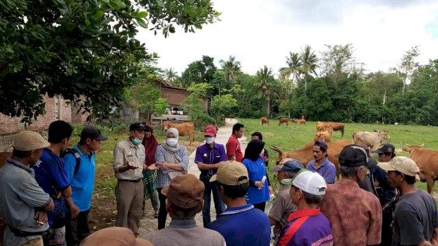 Arkaba Farm Australia Jajaki Kerja Sama Peternakan di Bulukumba