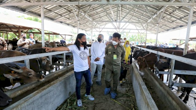 Jelang pelaksanaan shalat Idul Adha yang akan di helat pada 20 Juli 2021 mendatang, Menteri Pertanian RI Syahrul Yasin Limpo bertandang ke Kota Makassar dan mengunjungi RPH Rumminansia Manggala, Minggu (18/7/2021).