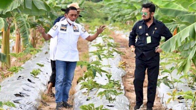 Menteri Pertanian Syahrul Yasin Limpo Bersama Syaharuddin Alrif
